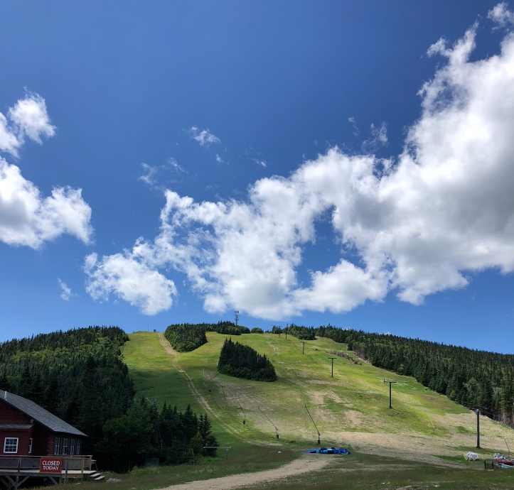 Ski slopes in summer